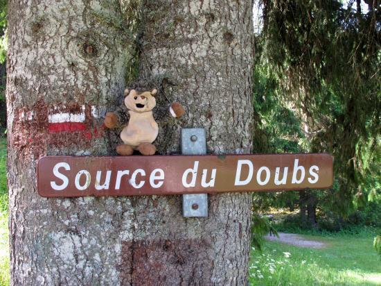 Source du Doubs (25)