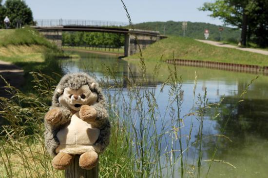 Canal de Bourgogne (21)