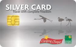 silver-card.jpg